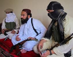 TTP (Credit: centralasiaonline.com)