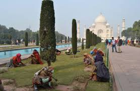 Taj Mahal cleanup (Credit: ibtimes.co.in)