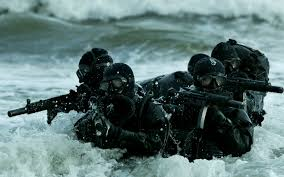 Navy SEALS (Credit: pinterest.com)